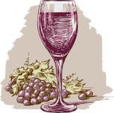 Vinexponeringsglas och druva Arkivbilder