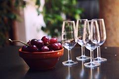 Vinexponeringsglas och druvor Royaltyfri Fotografi