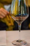 Vinexponeringsglas på winetasting Royaltyfri Fotografi