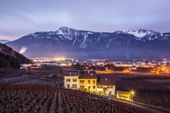 Vineyad和山在晚上 库存照片