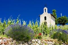 Vineyard. Grand cru vineyard and Chapel of St. Christopher, Hermitage, Rhone-Alpes, France Royalty Free Stock Photo