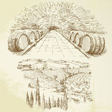 Vineyard. Winery - hand drawn collection Royalty Free Stock Image