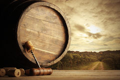 Free Vineyard Stock Images - 27618924