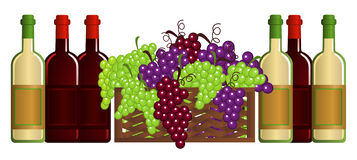 Vineyard. Clip-arts of wine and fruits Stock Photo
