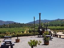 Vineyard winery with antique farm machinery stock photo