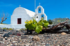 Vineyard At Santorini Of Cyclades, Greece Stock Photo
