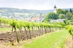 Vineyard in Austria Royalty Free Stock Image