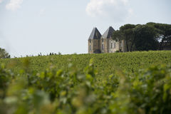Vineyard castle Stock Photos
