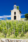 Vineyard and chapel in France. Grand cru vineyard and Chapel of St. Christopher, Hermitage, Rhone-Alpes, France Royalty Free Stock Photos