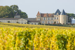 Vineyard and Chateau d`Yquem, Sauternes Region Stock Photography