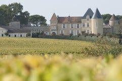 Vineyard and Chateau d`Yquem, Sauternes Region. France stock image