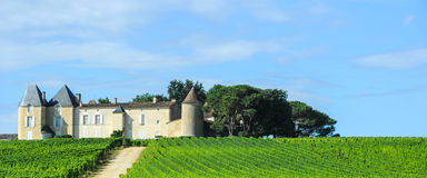 Vineyard and Chateau, Sauternes Region, Aquitaine, France Royalty Free Stock Photo