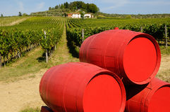 Vineyard in Chianti and old red wagon with wine barrels, Tuscany region. Vneyard in Chianti in Tuscany, Italy Royalty Free Stock Photo