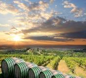 Vineyard in Chianti, Tuscany. Chianti vineyard landscape in Tuscany, Italy stock photos