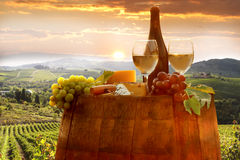 Vineyard in Chianti, Tuscany. White wine with barrel on vineyard in Chianti, Tuscany, Italy royalty free stock images
