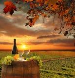 Vineyard in Chianti, Tuscany. White wine with barrel on vineyard in Chianti, Tuscany, Italy royalty free stock photo