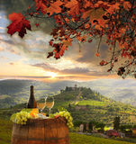 Vineyard in Chianti, Tuscany Stock Image