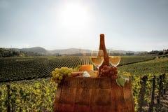Vineyard in Chianti, Tuscany Royalty Free Stock Photos