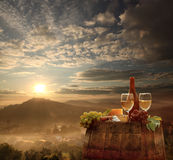 Vineyard in Chianti, Tuscany Stock Image