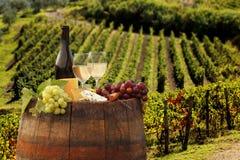 Vineyard in Chianti, Tuscany Stock Photo