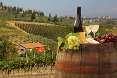 Vineyard in Chianti, Tuscany Stock Photography