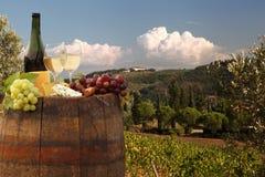Vineyard in Chianti, Tuscany Royalty Free Stock Image