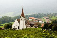 Vineyard and church Stock Image