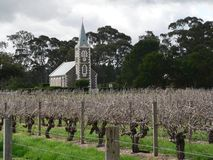 Vineyard and church. Scenic view of Syrah or Shiraz grape vineyard on Hill of Faith with old church in background, Barossa Valley, Australia Stock Photography