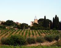 Vineyard and church Stock Photos