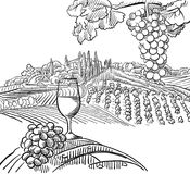 Vineyard Composition with Grapes and Glass of Vine stock illustration