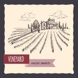 Vineyard and cottage landscape hand drawn vector sketch. Stock Images