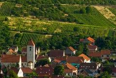 Vineyard country of Palava Royalty Free Stock Image
