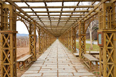 Corridor in Vineyard Royalty Free Stock Photo