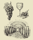 Vineyard doodle Royalty Free Stock Image