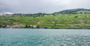 Vineyard on embankment of Geneva Lake in Vevey, Swiss Riviera, Switzerland Stock Photography