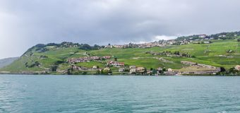 Vineyard on embankment of Geneva Lake in Vevey, Swiss Riviera, Switzerland Royalty Free Stock Image