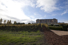 Vineyard Estate. A vineyard estate with grape vines in the foreground Royalty Free Stock Image