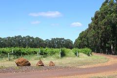 Vineyard estate in Margaret River, Western Australia Stock Images