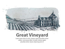Vineyard or a farm of hand-drawn sketch. vector illustration Stock Photography