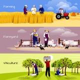Vineyard Farmyard Crop Harvesting Flat Banners Royalty Free Stock Photography