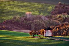 Vineyard and fields in autumn, South Moravia.Czech Republic. Vineyard and fields in autumn, South Moravia.Czech royalty free stock photography