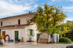 Vineyard at the foot of Mont Ventoux in Provence, France Stock Photography