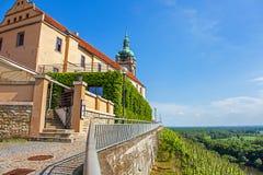 Vineyard in front of the castle Mělník Bohemia Stock Photos