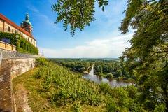 Vineyard in front of the castle Mělník Czech Republic Stock Photos