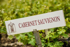 Vineyard Grape Identification Sign Stock Image