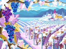 Vineyard and grapes bunches. Winter season landscape royalty free illustration