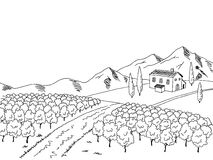 Vineyard graphic art black white landscape sketch illustration. Vector Royalty Free Stock Photos