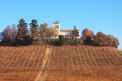 Vineyard hill at fall. Piedmont, Northern Italy. Stock Images
