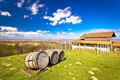 Vineyard hill landscape and wine barrels Stock Image