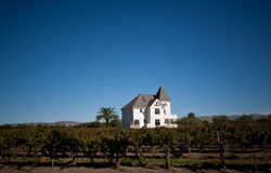 Vineyard home Stock Image